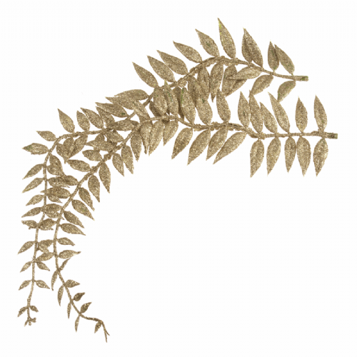 Leaves Fern 8 x 22cm Bunch of 2 Stems Gold